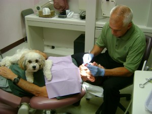 We provide state-of-the-art dental services.